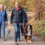 Leinenführung; 2 Frauen führen ihre Hunde an der Leine