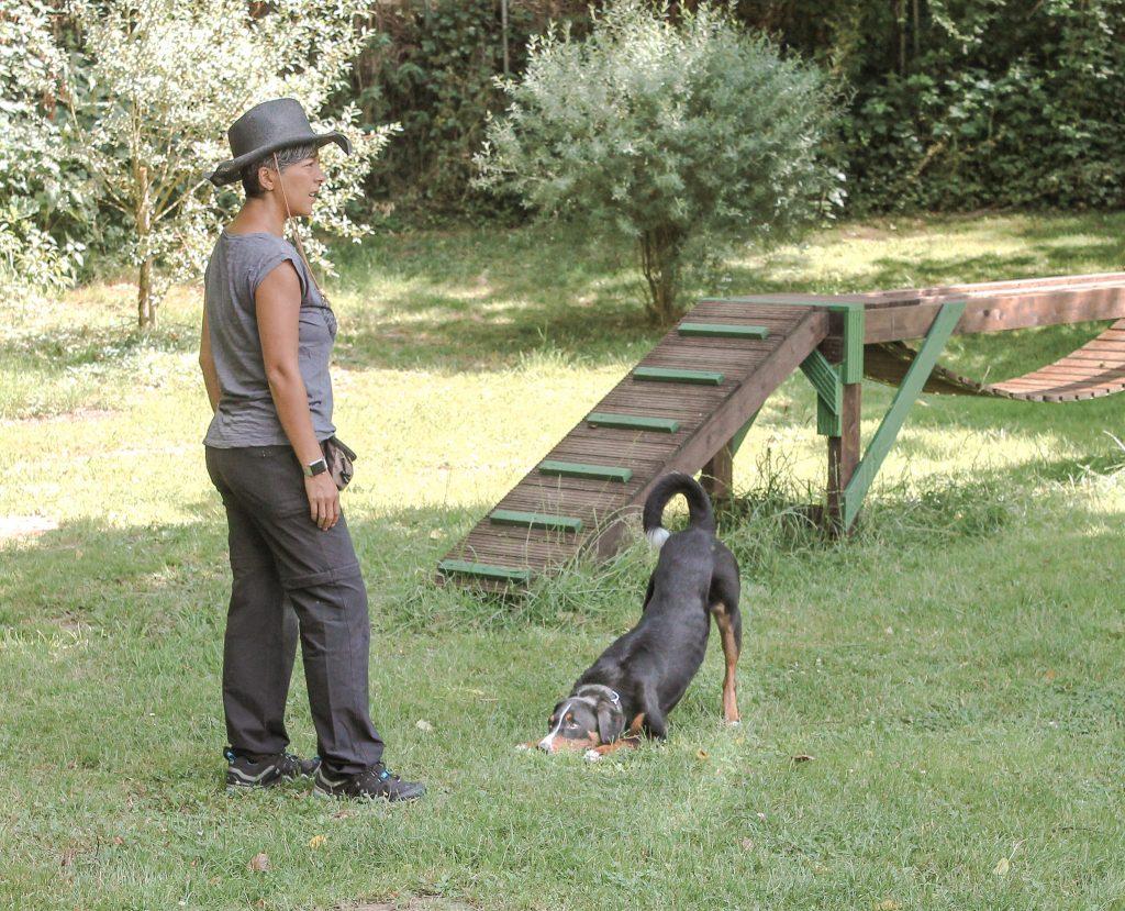 Frau mit Hund beim KEK Training
