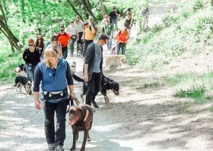 Mit dem Hund im Tierpark