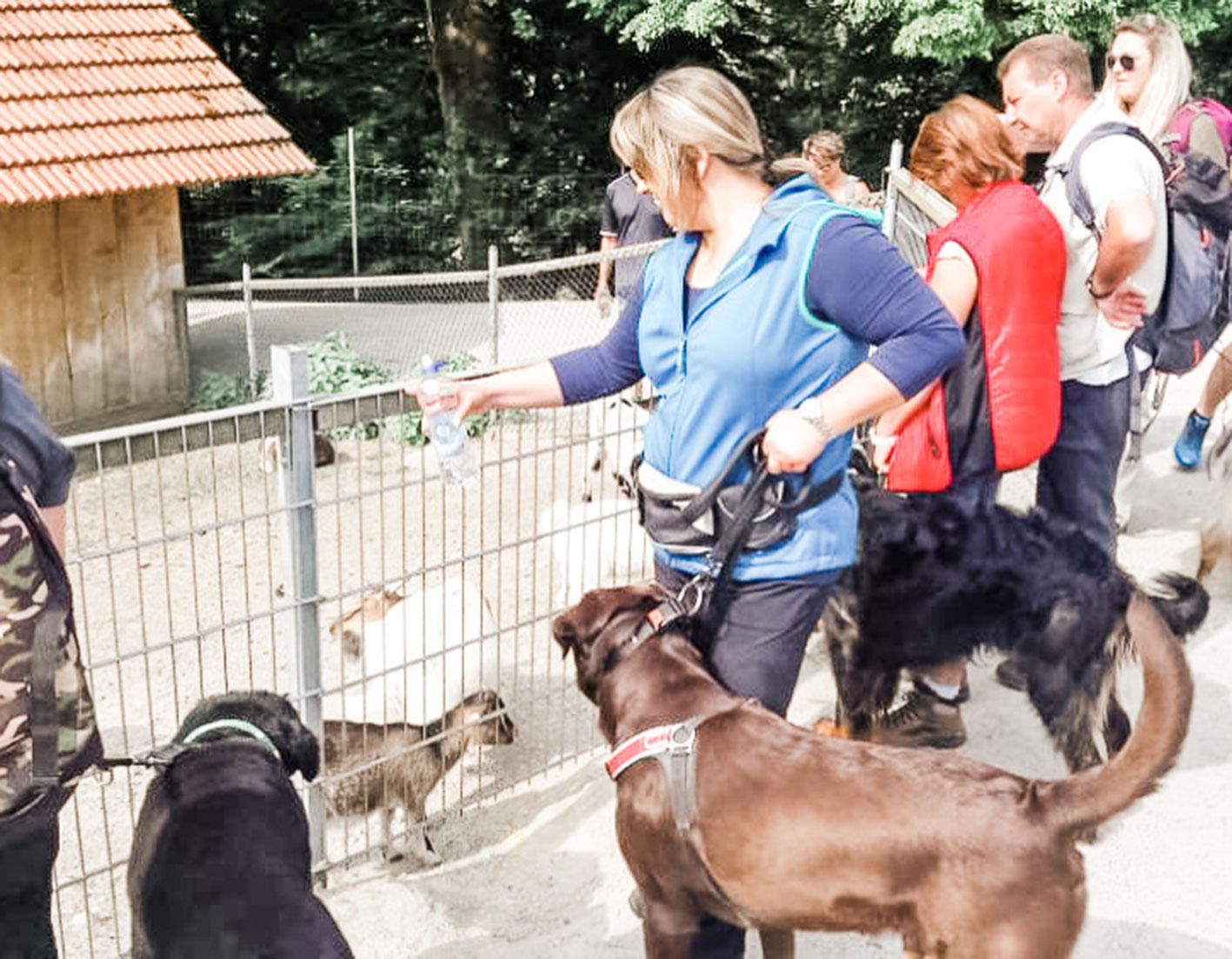 Mit dem hund im Zoo